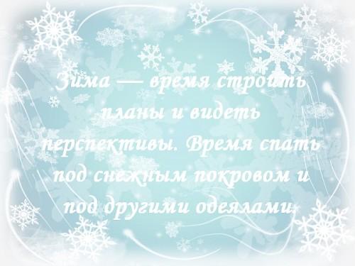 цитата о зиме 9