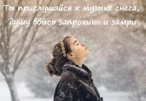 цитата о зиме 11