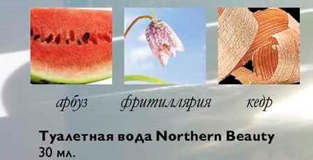 пирамида аромата Нозерн Бьюти